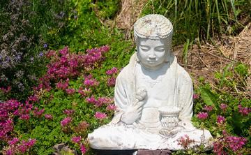 Deep Relaxation & Yoga Nidra Weekend Retreat