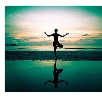 Yin Yoga Teacher Training(7 Days)