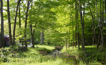 Yoga Retreat in the Berkshires September