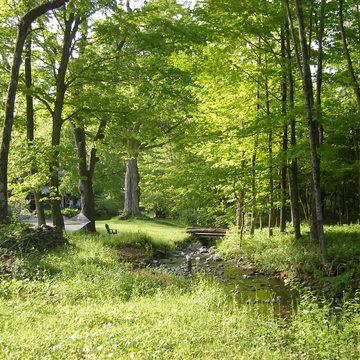 Yoga Retreat in the Berkshires