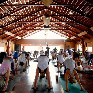200 hour Yoga Teacher Training at the Govardhan Ecovillage, India (July 2018)