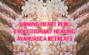 2 Day Ayahuasca Experience, 1 Evolutionary Healing Ceremony + Shamanic Guidance & Integration in English at Shipibo Retreat Center