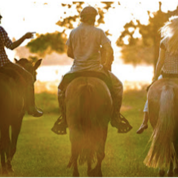 Horse and Wine Retreat in Buenos Aires, Argentina (Feb 2019)