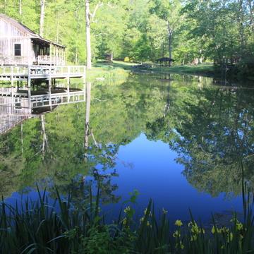 Spring Renewal Residential Meditation Retreat