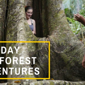 Two Day Rainforest Adventure