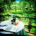 La Casa de mi Sueño Jungle Eco-Garden Lodge