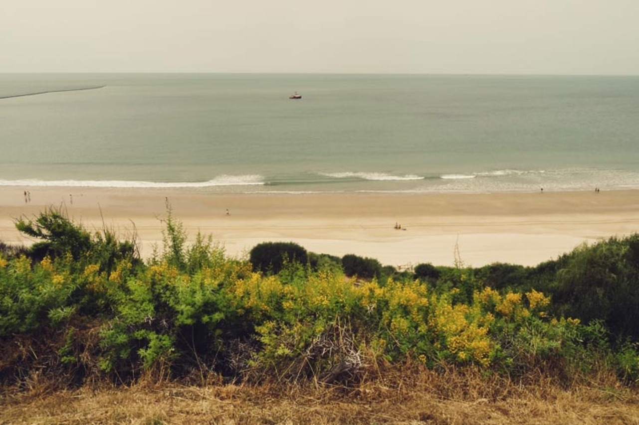 Beach and Meditation Yoga Retreat in Andalucia, Spain - Event ...