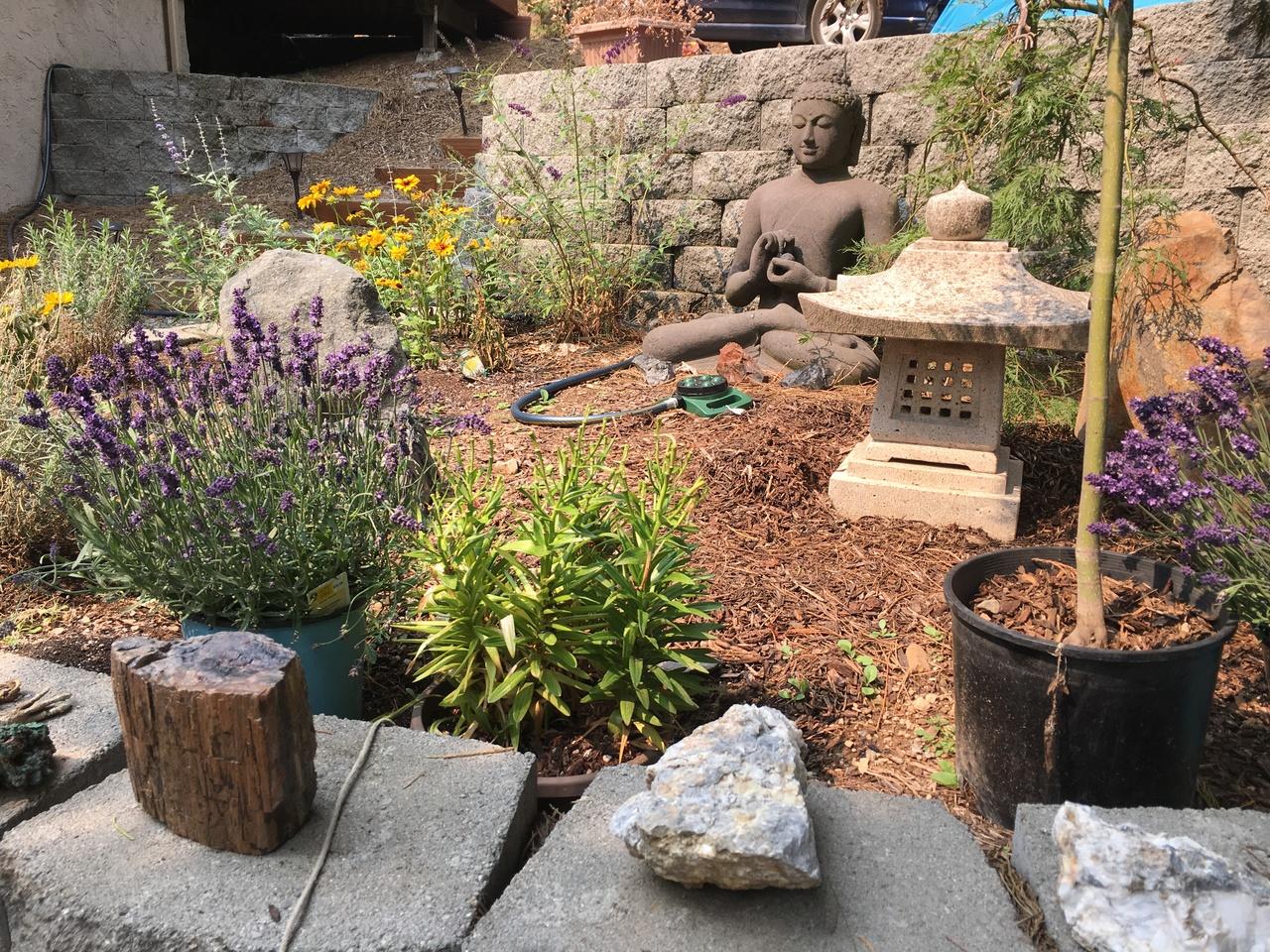 The Sacred Valley Healing Center- Mount Shasta - Center - Retreat Guru