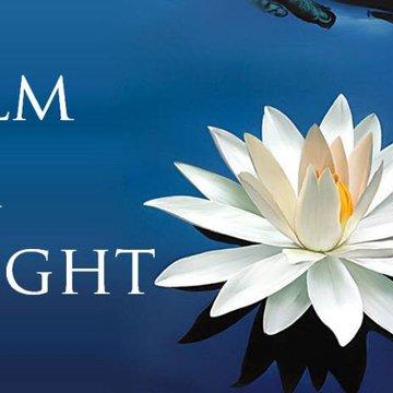 Calm and Insight – 12 Day Meditation Retreat