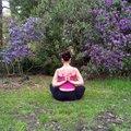 Alva Yoga