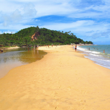 Ayahuasca Retreat Brasil Bahia