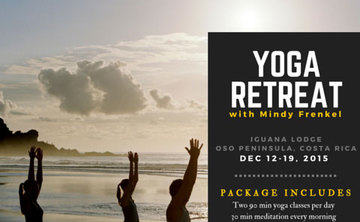 Yoga Retreat with Mindy Frenkel
