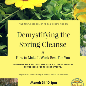 Demystifying the Spring Cleanse