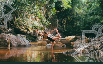 """10 Day Yoga and Ayahuasca Immersion """"The Nature of Yoga"""""""