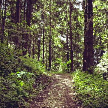 Hike-A-Thon Benefiting Leukemia & Lymphoma Society!