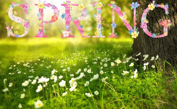 Seeds of Possibilities: Spring Equinox Meditation