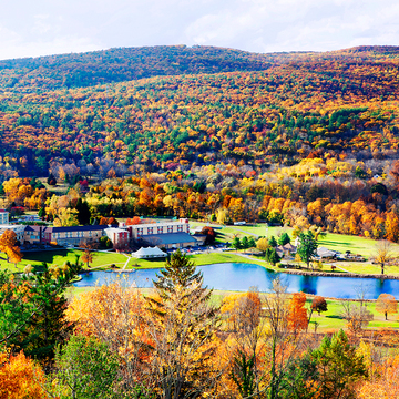 Catskills R&R Retreat  - Power up your immunity