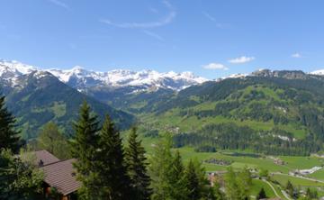 Ayahuasca Retreat Switzerland : Lenk near Gstaad (May 2018)
