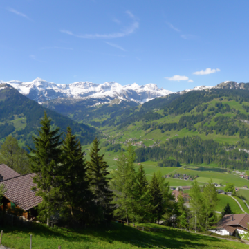 Ayahuasca Retreat Switzerland : Lenk near Gstaad (May 2018)