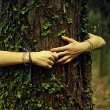 Becoming Ecologically Awake: Do We Love Life enough?