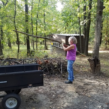 Volunteer Work Day at the Forest! Free lunch!
