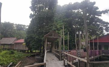 9 Day Jungle Retreat And Excursion In Iquito Peru