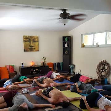 Restorative Yoga and Meditation Workshop
