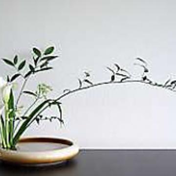 Intermediate Ikebana Class: Gentle Courage