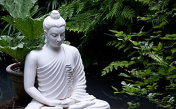 Level 1: The Art of Being Human Weekend Meditation Retreat