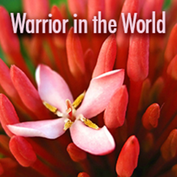 Shambhala Training Level III: Warrior in the World