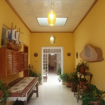New Life Iboga - Ibogaine Treatment Clinic in Costa RIca