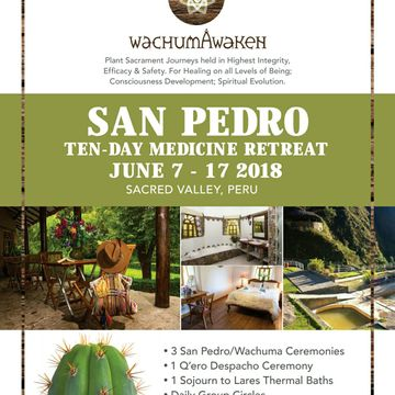 10 Day Wachuma/San Pedro Healing Retreat