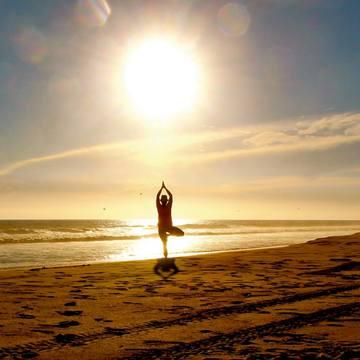 Yoga + Ayurveda: Yoga Veda Shala Teacher Training