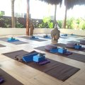 Red Buddha Yoga & Wellness