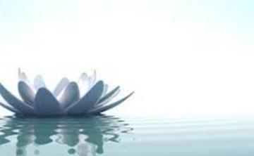 Dec. Stillness Retreat