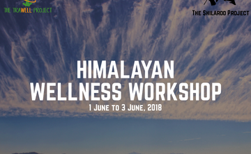 HIMALAYAN WELLNESS WORKSHOPS