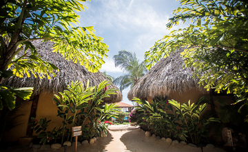 8 Days Restore and Refresh Yoga Retreat in Mexico