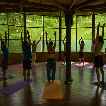 13 Day Yoga Intensive Ayahuasca Retreat