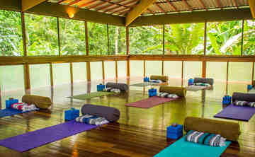 Inner With Your Inner Joy - Yoga, Ayurveda, & Aromatherapy