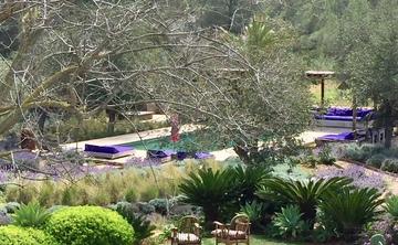 Writing Workshop and Yoga - June, Ibiza