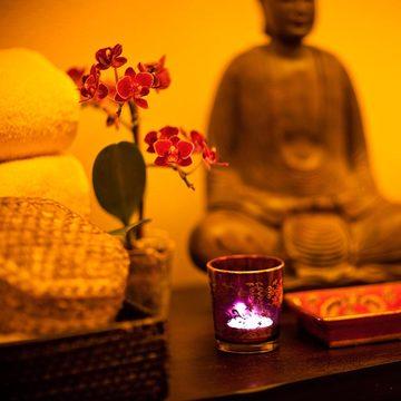 Embodying Shakti: Awakening Sacred Power through Sound, Meditation and Voice