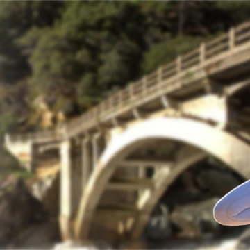 Bridge to Ananda Yoga®