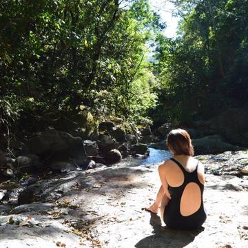 8-Day Ayahuasca Healing Retreat (Dec. 15-22)