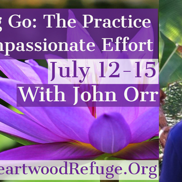 """Letting Go"" The Practice of Compassionate Effort"