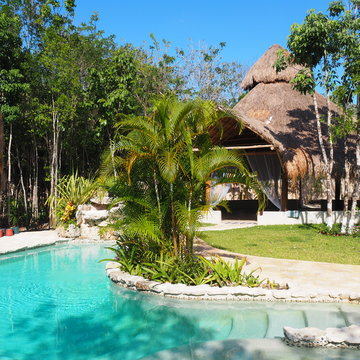 Heart of the Jungle: 7-Day Bluestone Ayahuasca Retreat in Cancun, Mexico August 15-22, 2018