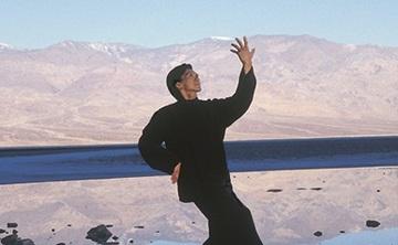 Flying Phoenix Qigong w/Sifu Terence Dunn