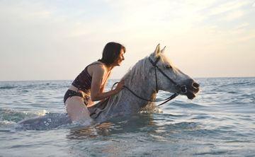Prana & Ponies: Crete