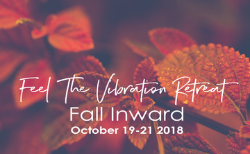 Feel the Vibration Retreat – Fall Inward