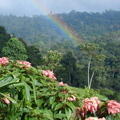 Farm of Life (Finca de Vida) Costa Rica