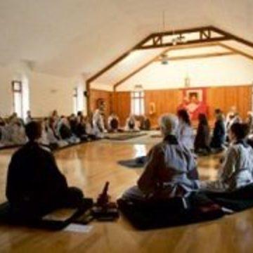 Wild Grasses Sesshin: A Meditation Intensive for Women